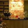 Hotel Andrassy Residence - hotel di benessere a Tarcal - entrata dello spa