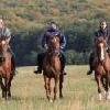 Hotel Welness Lover w Sopron- jazda konia na płaszczynie obok miasta