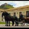 Andare in carrozza a Sumeg - vacanze attive a Sumeg all'Hotel Kapitany